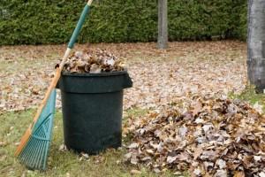 вывоз листвы и веток в Туле
